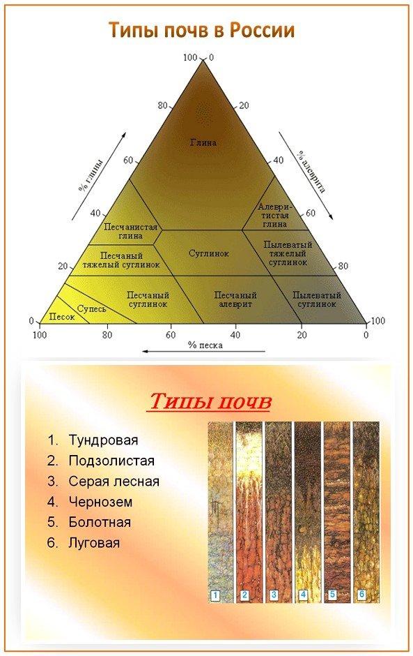 Типы почв и фунамент для бани
