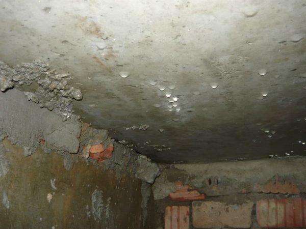 Конденсат на потолке подвала