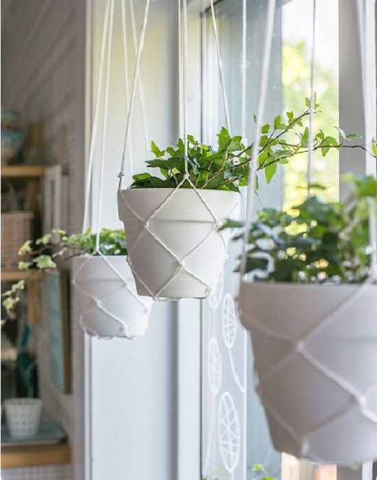 Растения в верёвочных кашпо