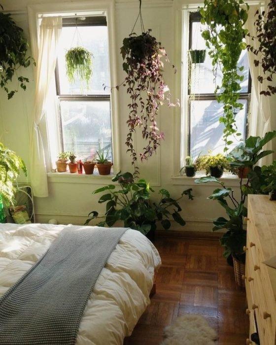Растения в интерьере спальни