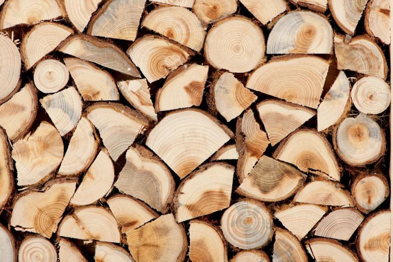 Как быстро высушить дрова