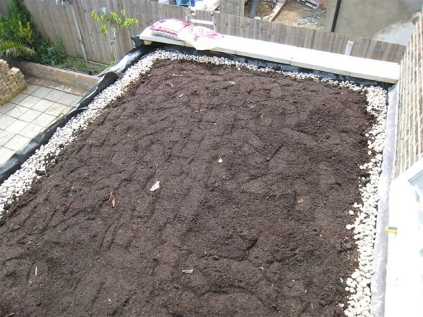 Засыпание поверхности слоем почвы