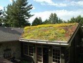 Цветники из многолетников на крыше