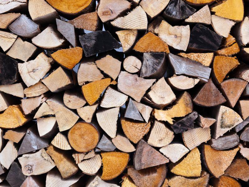 Плюсы и минусы еловых дров, возможные альтернативы