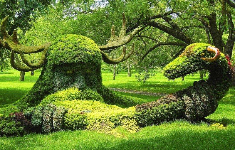 Варианты скульптур из растений: фото