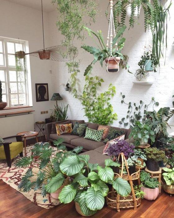 Обилие растений в интерьере гостиной