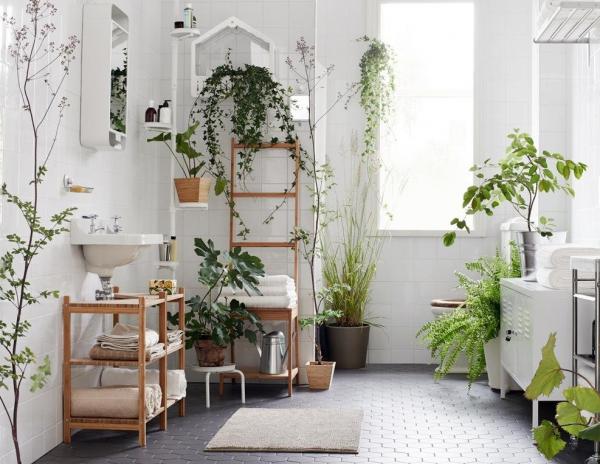 уютный интерьер с растениями